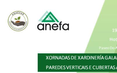 Allariz celebra as II Xornadas de xardinería galaico-portuguesas sobre paredes verticais e cubertas