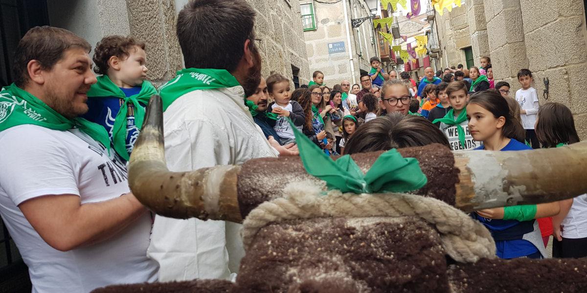 Festa do Boi de Allariz