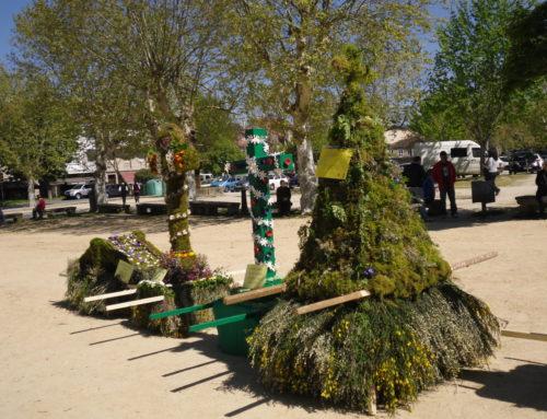 Allariz celebra, un ano máis, a tradicional Festa dos Maios