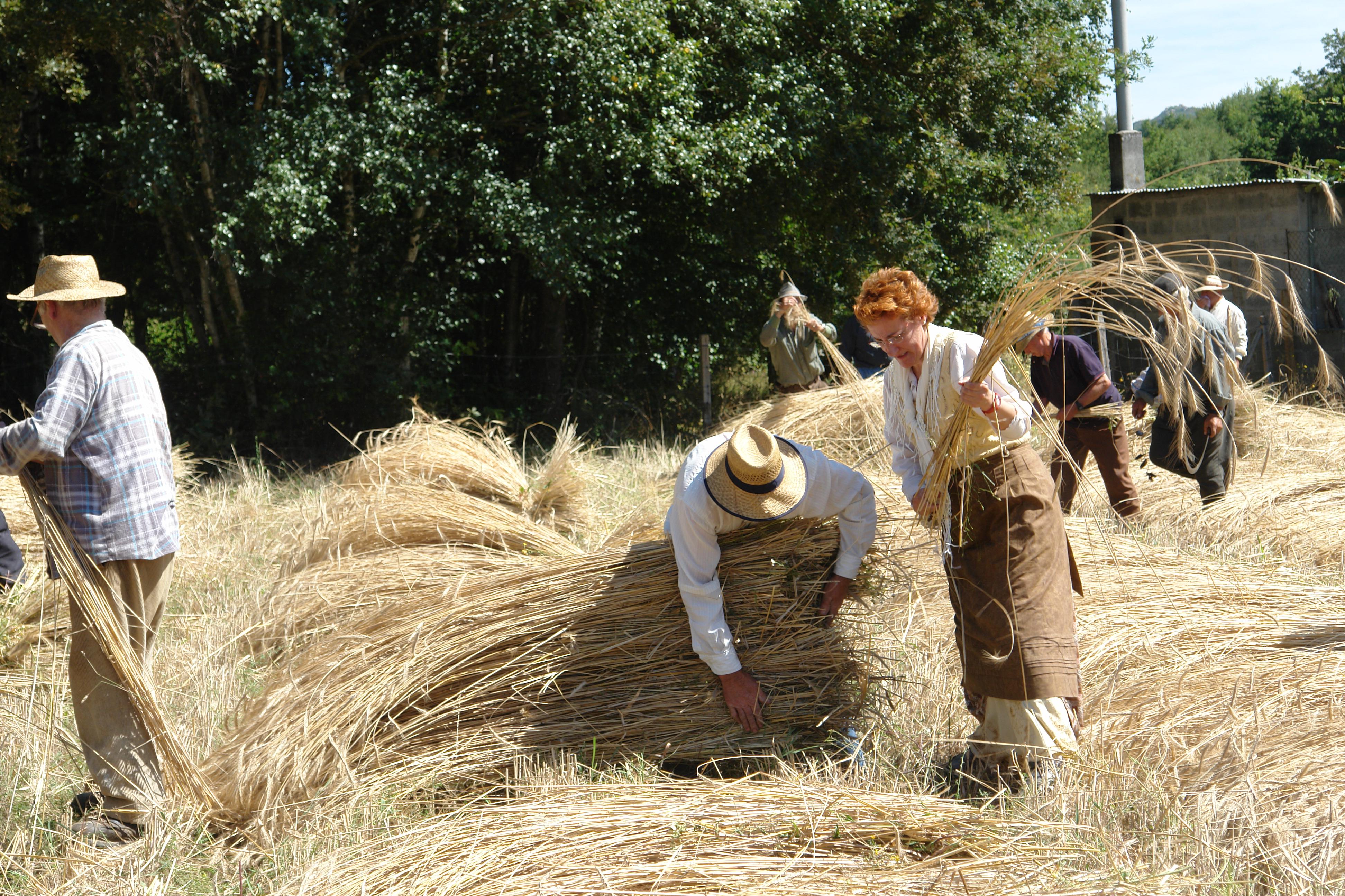Pan cen por cen de Allariz nas Festas Etnográficas